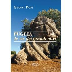 Puglia, le vie dei grandi olivi. Itinerari ed escursioni